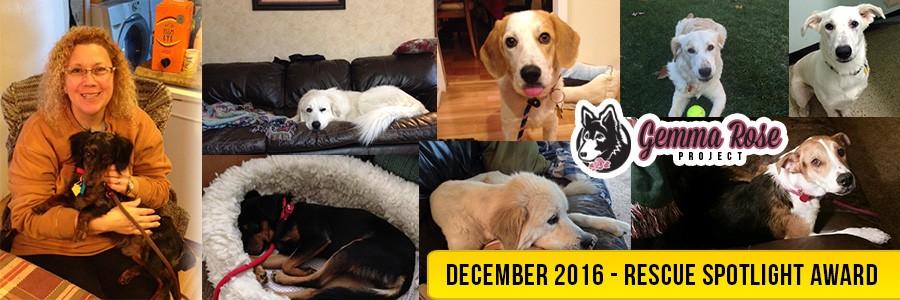 December 2016 Rescue Spotlight