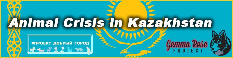 Crisis in Kazakhstan